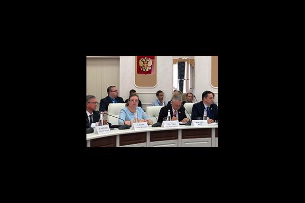 Екатерина Шугрина принята участие в совещании по вопросам избирательного права