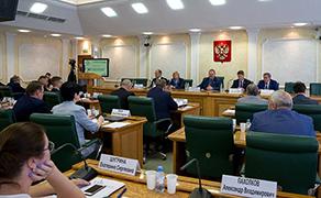 Механизмы поддержки малых городов и исторических поселений обсудили в Совете Федерации