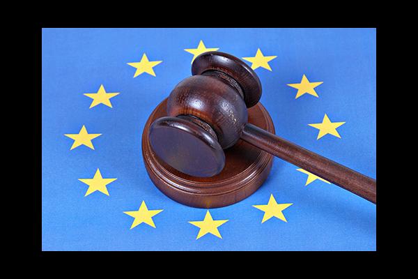 ЕСПЧ в деле «Сергунин против РФ» защитил права добросовестных приобретателей при отчуждении муниципальной собственности